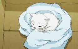 """Résultat de recherche d'images pour """"manga chat blanc"""""""