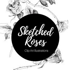 Digital Sketched Roses Clip Art Illustration Pencil Sketch Clip Art Fine Art Clip Art Trends 2019 Trendy Floral Illustrations