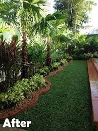 Small Picture Best 25 Palm garden ideas on Pinterest Palm plants Tropical