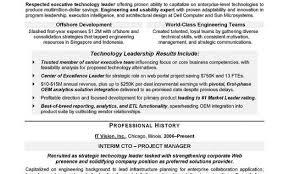 Cto Sample Resume Resume Writing Service Boston Nyc Seattle