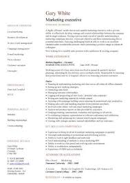 Cv Template For Care Assistant Cv Template Executive Medical Assistant Resume Health