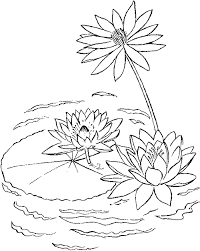 Small Picture Lily Pad Printable Coloring Pages Enjoy Coloring Kids Art