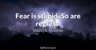 Stupid Quotes BrainyQuote Best Stupid Quotes