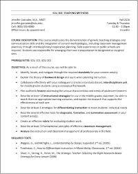 Summary Of Skills Resume Sample Cool Ceo Resume Sample Summary LightsforLess
