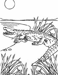 Sea Monster White Crocodile Sea Monster Coloring Page Coloring
