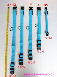 Small Dog Collar Size Chart Dog Collar Size Chart Cm Google Search Diy Dog Collar