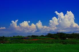 「夏の雲」の画像検索結果