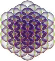 Fleur de vie 3d