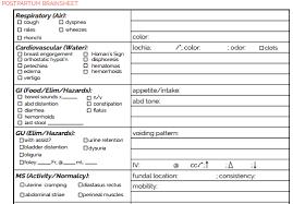 Report Sheet Template The Ultimate Nursing Brain Sheet Database 33 Nurse Report Sheet