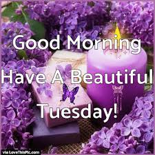good morning have a beautiful tuesday gif e