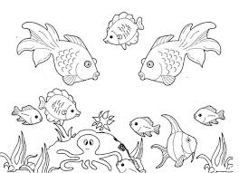 Small Picture 58 best Fish Coloring Pages images on Pinterest Fish Animal
