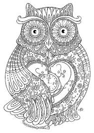 Small Picture free printable adult coloring pages owl printable Printable