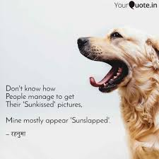 Best Sunkissed Quotes Status Shayari Poetry Thoughts Yourquote
