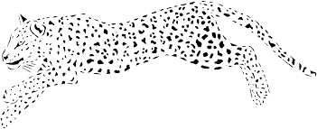Small Picture Cheetah Coloring Pages Colorinenet 9812 Coloring Home