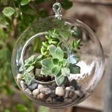 terrarium design givingplants com gifts that grow amusing globe terrarium