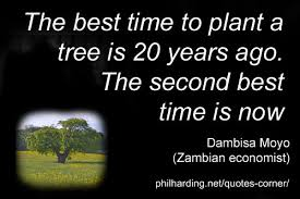 Quotes On Nature And The Natural Environment Quotes Corner Amazing Best Nature Quotes