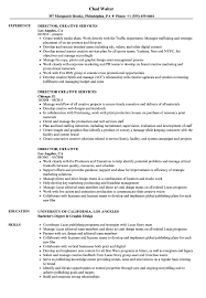 Creative Resume Sample Director Creative Resume Samples Velvet Jobs 50