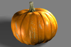 realistic pumpkin drawing. our final assignment for this class is to create a realistic texture pumpkin that will then be composited into photograph of other real pumpkins. drawing