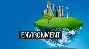 environment essay for school and college students environment