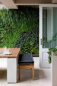 Terrace and Garden: Green Living Wall In Backyard - Green Walls