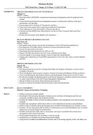 Project Business Analyst Resume Samples Velvet Jobs