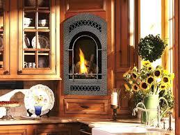 small glass fireplace mll nturl pleasant hearth alpine doors