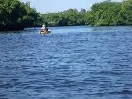Little Manatee River Wikipedia