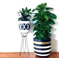 large plant pots indoor plant vases indoor indoor tree pots indoor large plant pot indoor extra