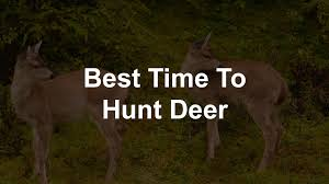 Deer Movement Chart Texas The Dos And Donts Of Deer Hunting