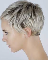 Short Layered Ladies Hairstyle Haircuts Female 2019