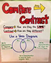 compare and contrast essay college vs high school rodeo  www  compare and contrast essay college vs high school rodeo