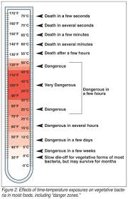 Food Temperature Chart Danger Zone