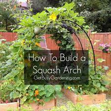 how to build a squash arch self
