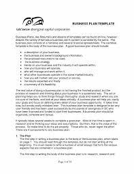 Startup Business Plan Template Pdf Contemporary Printable Sample