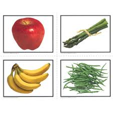Food Flash Cards Food Flashcards Aba Speech Therapy Supplies