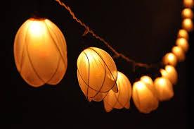 White Tulip String Fairy Lights For Bedroom, Indoor String Lights, Fairy  Lights, Bedroom