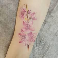 цветы сакуры нежные добавлено анастасия трикина