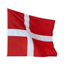 Image result for dansk flag