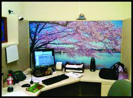 Office Cubicle Decorating Ideas Office Decorations Home Design