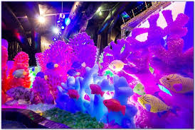 moody gardens festival of lights s