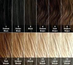Light Brown Hair Color Chart Fooru Me
