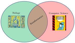 Venn Diagram Bioinformatics The New Kid Bioinformatics As An Emerging Science