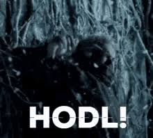 Making us wish we paid more attention in class since 1809. Hodl Gifs Tenor