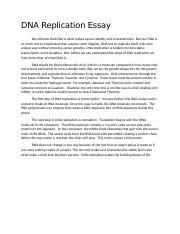 Dna Essay Biology 2 05 Dna Reproduction Docx Dna Replication Essay