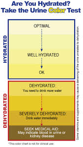 Medical Urine Color Chart Urine Color And Dehydration Continued Apec Water