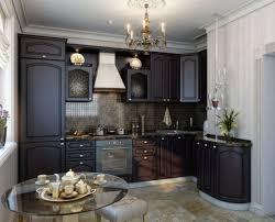 Kitchen Remodel Dark Cabinets Backsplash Stainless 25 Stainless