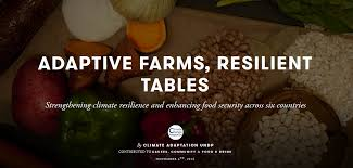 adaptive farms resilient tables building secure food systems and photo essay adaptive farms resilient tables