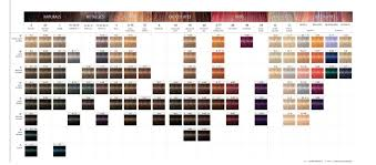 Igora Color Chart Hairdressing Liquid Product Schwarzkopf Professional Hair