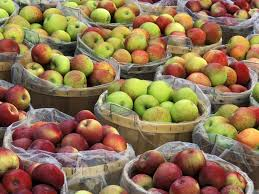 Image result for baskets of apples