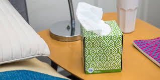 Bathroom Tissue Best The Best Facial Tissue Reviews By Wirecutter A New York Times Company
